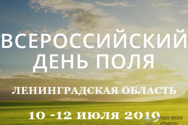 День поля 2019 в санкт-петербурге