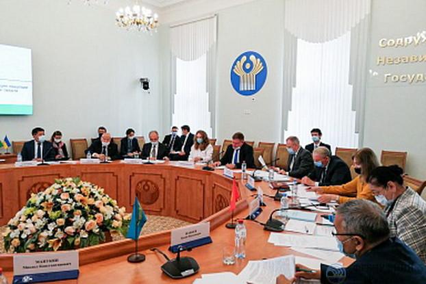 Врио директора ВНИИ «Радуга» выступил с докладом на заседании Комиссии экономического совета СНГ